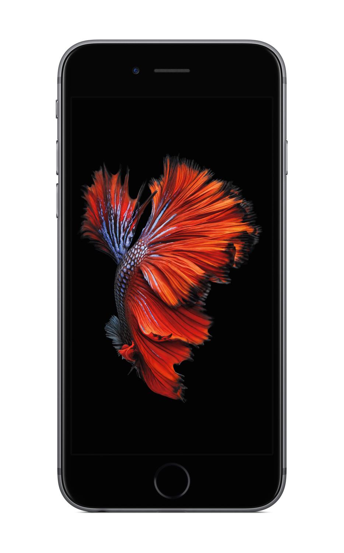 apple iphone 100. apple iphone 100 1