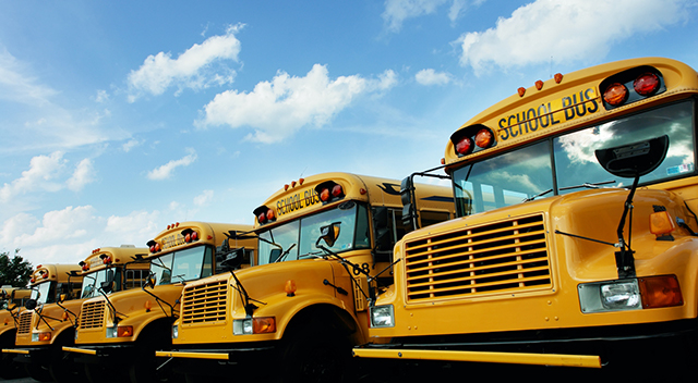 Closeup of yellow school buses all parked side-by-side in a row.